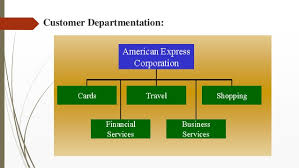 American Express Organizational Structure Chart Organizational Structure Departmentation