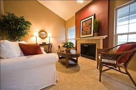 accent wall paint ideasAccent Wall Paint Ideas For Living Room Paint Colors For Accent
