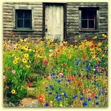 Small Picture Wildflower Garden Design Impressive Flower Garden Ideas 14