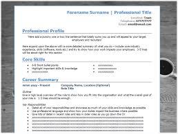 Modern Bullet Points Resume Modern Resume Templates Modern Resume Template Microsoft