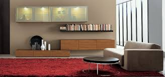 Wall Storage Cabinets Living Room  RtmmlawcomStorage Cabinets Living Room