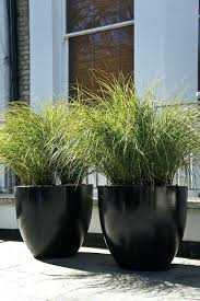 large garden planters black big potted outdoor lots