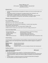 Examples Of Combination Resumes Impressive Examples Of Combination Resumes Mesmerizing Combination Resume