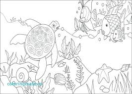 coloring rainbow fish page to see printable version for pages 19