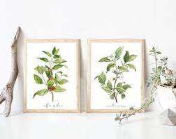 Shop for coffee plantation art from the world's greatest living artists. Coffee Plant Art Etsy