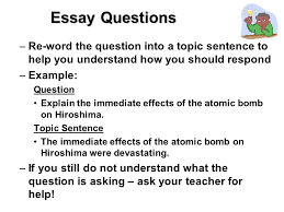 test taking skills make sure you prove what you know essay tests  5 essay questions
