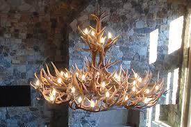 570 xl mt elbert elk mule deer extra large antler chandelier
