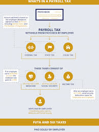 Estimate Payroll Deductions Payroll Infographics Visual Ly