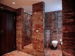 Amazing Walk In Shower Tile Ideas Bathroom Ehomepedia
