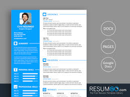 What Is Needed For A Modern Resume Vasilis Modern Resume Template Resumgo Com