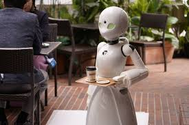 Image result for japan people married a robot