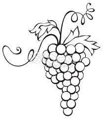 grapes clipart black and white. 40 awesome cluster of grapes clipart images black and white