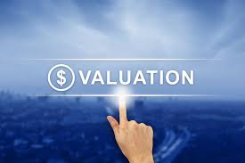 Certified Equity Professional Designation An Introduction To The Chartered Business Valuator Designation