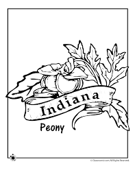 Small Picture State Flower Coloring Pages Indiana State Flower Coloring Page