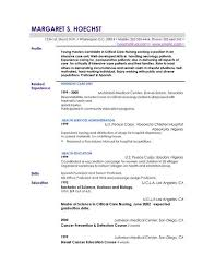 Profiles On Resumes Good Profile For Resumes Freeletter Findby Co