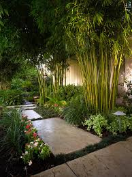 Small Picture asian inspired garden design Bamboo trees along the garden wall
