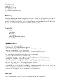 Resume Templates Workforce Management Analyst summary highlights