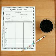 Plant Tracking Sheet For Kids Plant Growth Preschool