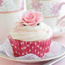 Birthday Card Blank Cup Cake Design Large Square Size 625 X 625 Hi0015