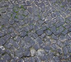 medieval stone floor texture.  Medieval Intended Medieval Stone Floor Texture