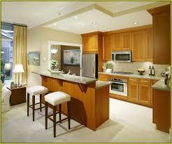 kitchen design images small kitchens kitchen cabinet designs for
