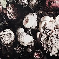 Black Floral Wallpapers on WallpaperDog