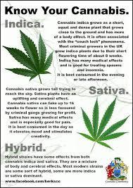 Sativa Indica Strain Chart Sativa Indica Hybrid Chart Www Bedowntowndaytona Com