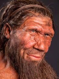 Image result for neanderthal dna