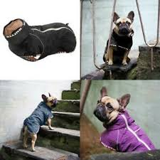 Details About Hurtta Casual Quilted Jacket Dog Coat