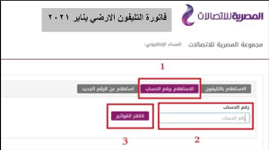 الاستعلام عن فاتورة التليفون الارضي يناير 2021 عبر موقع الشركة المصرية  للاتصالات برقم الهاتف