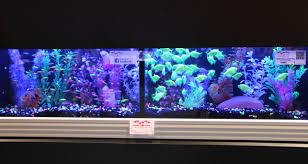 Glofish Light Bar How To Install Glofish Aquarium Background Best Aquarium 2018