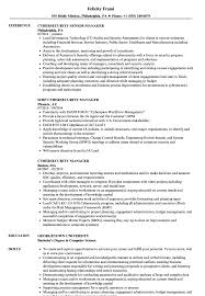 Security Manager Resume Examples Cybersecurity Manager Resume Samples Velvet Jobs 18