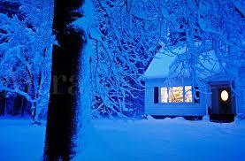 Amazoncom Ohio Wholesale Radiance Lighted Merry Christmas Pick Christmas Tree In Window