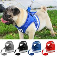 In Dog Harness Dogharness Org