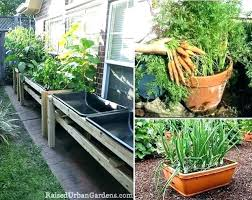 vegetable garden planters ideas container vegetable gardening container vegetable gardens vegetable container gardening for dummies