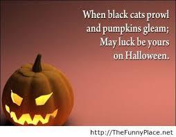 Pumpkin Funny Quotes. QuotesGram