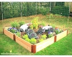 raised bed garden kit cedar kits best reasons to apply costco gronomics elevat