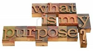 purpose in life leading in life remarkable chatter  what is my purpose