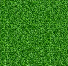33 Grass Textures Free PSD AI Vector EPS Format Download