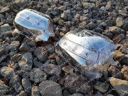 <b>Хром LED накладки на</b> зеркала Toyota Nadia 1998-2003 - GT и ...