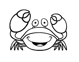 Small Picture Velvet crab coloring page Coloringcrewcom