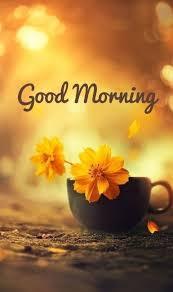 Guten Morgen Grüße Bilder Bilder Und Sprüche Für Whatsapp Und