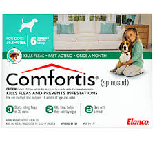 comfortis for dogs. Contemporary Comfortis On Comfortis For Dogs