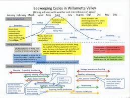 Honey Processing Flow Chart Honey Flow Chart Image Result For Nectar Bees Map Diagram