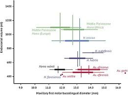 Darwin S Theory Of Evolution Chart Pearson Human Evolution Wikipedia