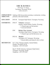 First Resume Examples