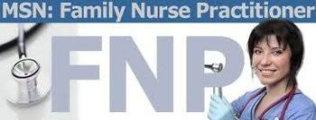 msn family nurse practitioner goal statements purpose essay samples statements of excellence for the fnps of tomorrow