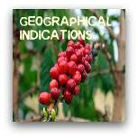 Image result for geographical indication