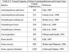 Human Evolution Chart Species Australopithecine Evolution