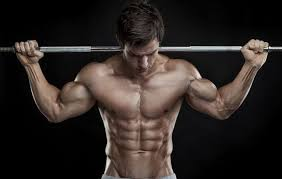 strong fast and ripped the training plan